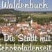 Segway_Stuttgart_Waldenbuch